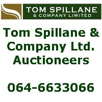 Tom Spillane