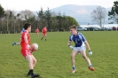 South Kerry League, Templenoe V Waterville Feb 2016_1