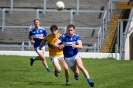 Kerry County IFC Semi Final, Templenoe V Glenflesk, April 2019_10