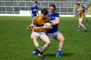 Kerry County IFC Semi Final, Templenoe V Glenflesk, April 2019_4