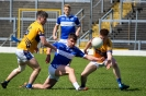 Kerry County IFC Semi Final, Templenoe V Glenflesk, April 2019_8